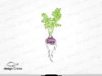 Gaea Foods