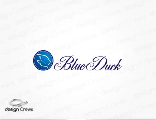 Blue duck
